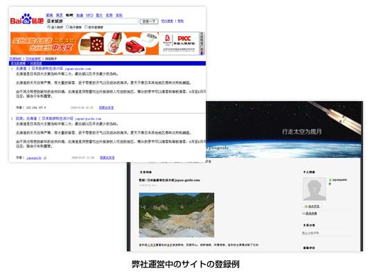 SNS、特に中国検索エンジンが運営するもの