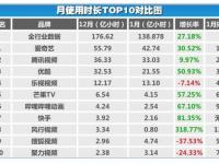 中国ビデオ市場シェア2017年
